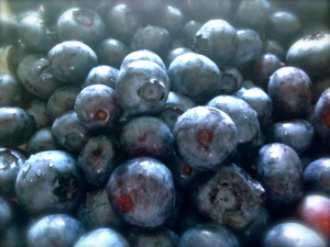Blueberries /Fruit